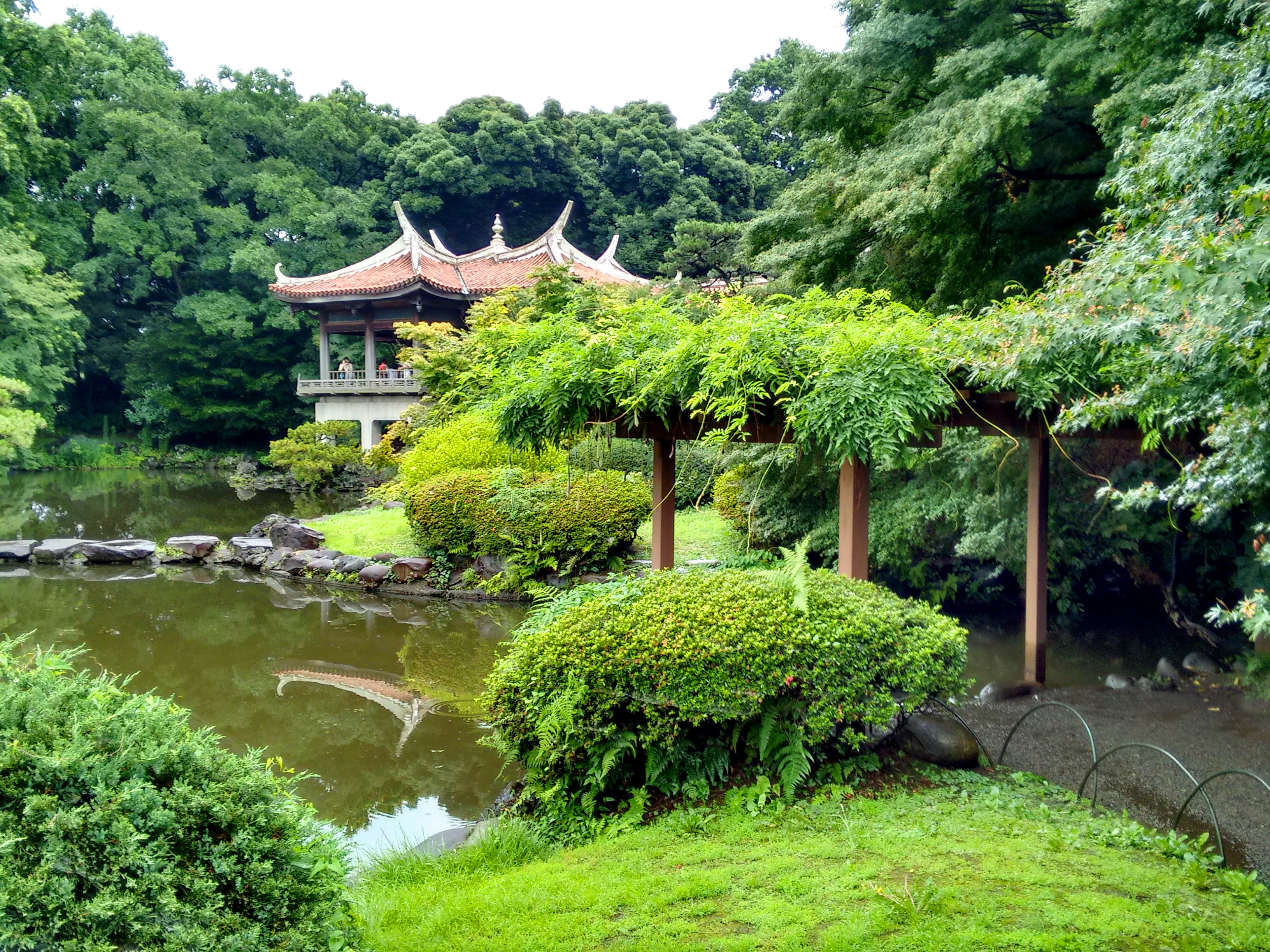 One Of The Spots You Can See In The Movie, Shinjuku Gyoen National Garden.